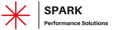 SPARK PERFORMANCE SOLUTIONS